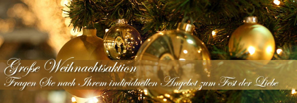 Große Weihnachtsaktion ©Katharina G.